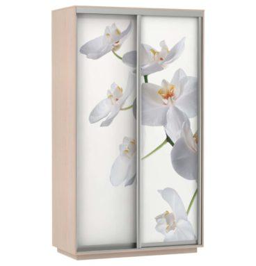 Шкаф купе 2-х дверный Фото Хит орхидея дуб молочный