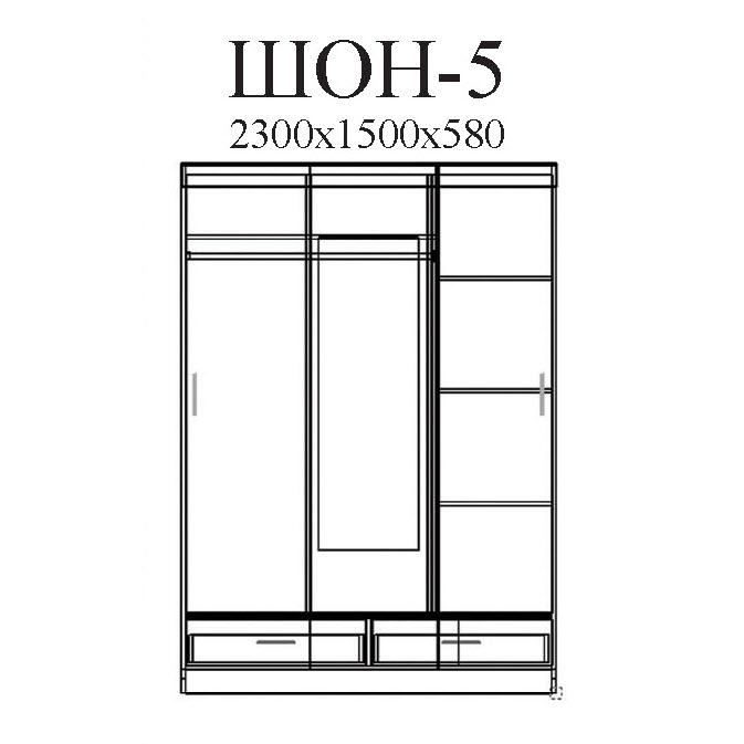 Шкаф-купе ШОН-5 размер