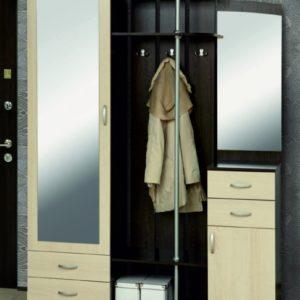 Шкаф комбинированный Визит-М08 венге