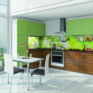 Пластиковая кухня Яблоко-Олива 1.6х2.8